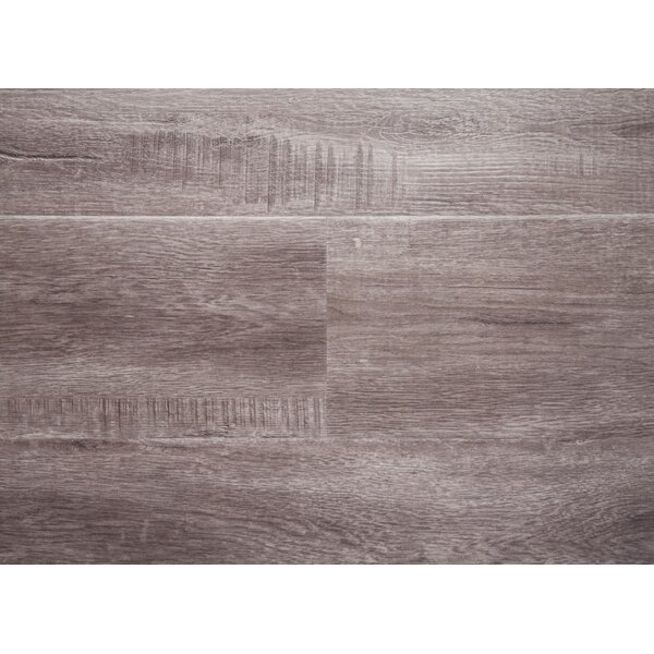 Rio 7.5 x 48 x 12mm Oak Laminate Flooring in Gray with Moisture Resistant Wax by Chic Rugz
