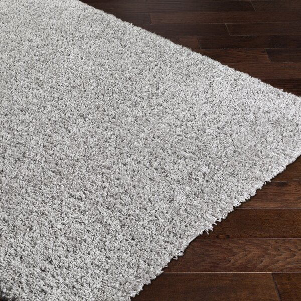 Roberto Gray Area Rug by Willa Arlo Interiors