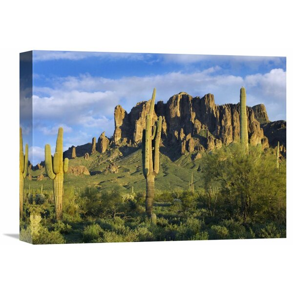 Nature Photographs Saguaro Cacti and Superstition Mountains at Lost Dutchman State Park, Arizona Photographic Print on Wrapped Canvas by Global Gallery