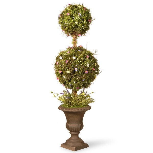 Spring Topiary in Urn by National Tree Co.