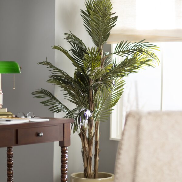 Robellini Palm Tree in Pot by Beachcrest Home