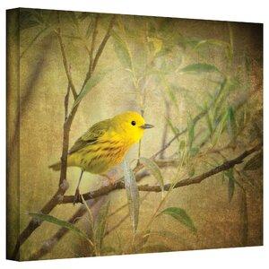 'Bird on Branch' Graphic Art on Canvas by Three Posts