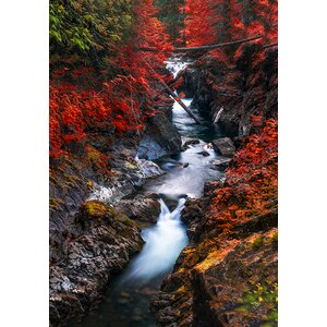 Water In The Fall Photographic Print on Wrapped Canvas by Red Barrel Studio
