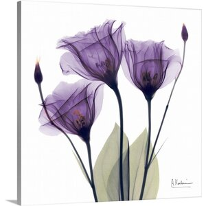 Purple Flower Trio by Albert Koetsier Photographic Print on Wrapped Canvas by Great Big Canvas