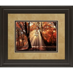 Dressed To Shine by Lars Van De Goor Framed Photographic Print by Classy Art Wholesalers