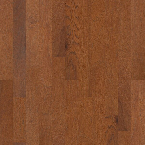 Conrad 5 Engineered Hickory Hardwood Flooring in Spur by Shaw Floors