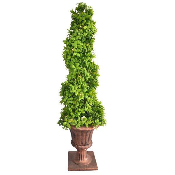 Floor Ceder Topiary in Urn by Fleur De Lis Living