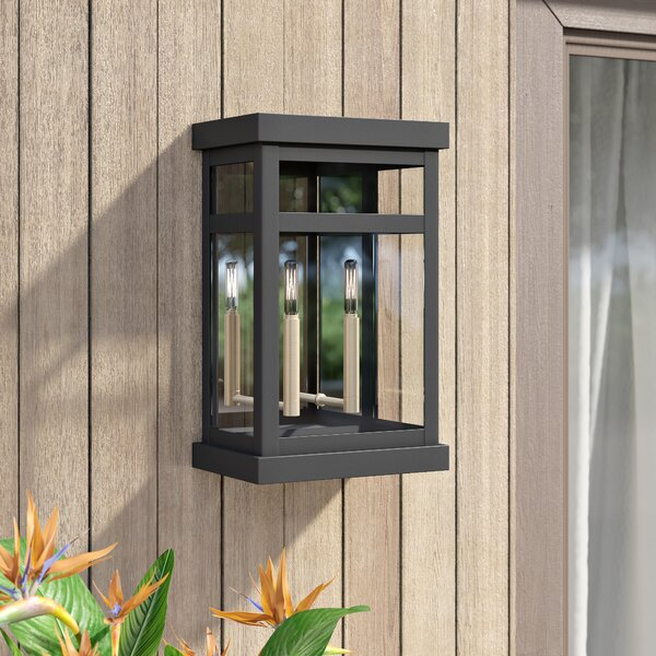 Demko 2-Light Outdoor Flush Mount by Mercury Row