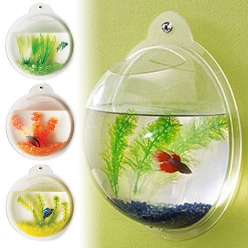 Hewett Fish Bubble Deluxe Acrylic Wall Mounted Aquarium Tank by Tucker Murphy Pet
