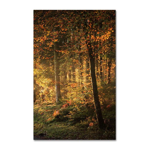 Some Memories Never Fade by Philippe Sainte-Laudy Photographic Print on Wrapped Canvas by Trademark Fine Art
