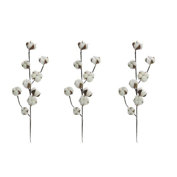 Faux Cotton Spray Floral Arrangement by Gracie Oaks