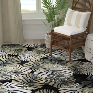 Check Prices Skeen Tropical Black Area Rug ByBay Isle Home