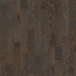 Hardwood Floors Samples Throughout Sample Evergreen Engineered Hickory Hardwood Flooring In Crystal Cave Shaw Floors Samples Youll Love Wayfair