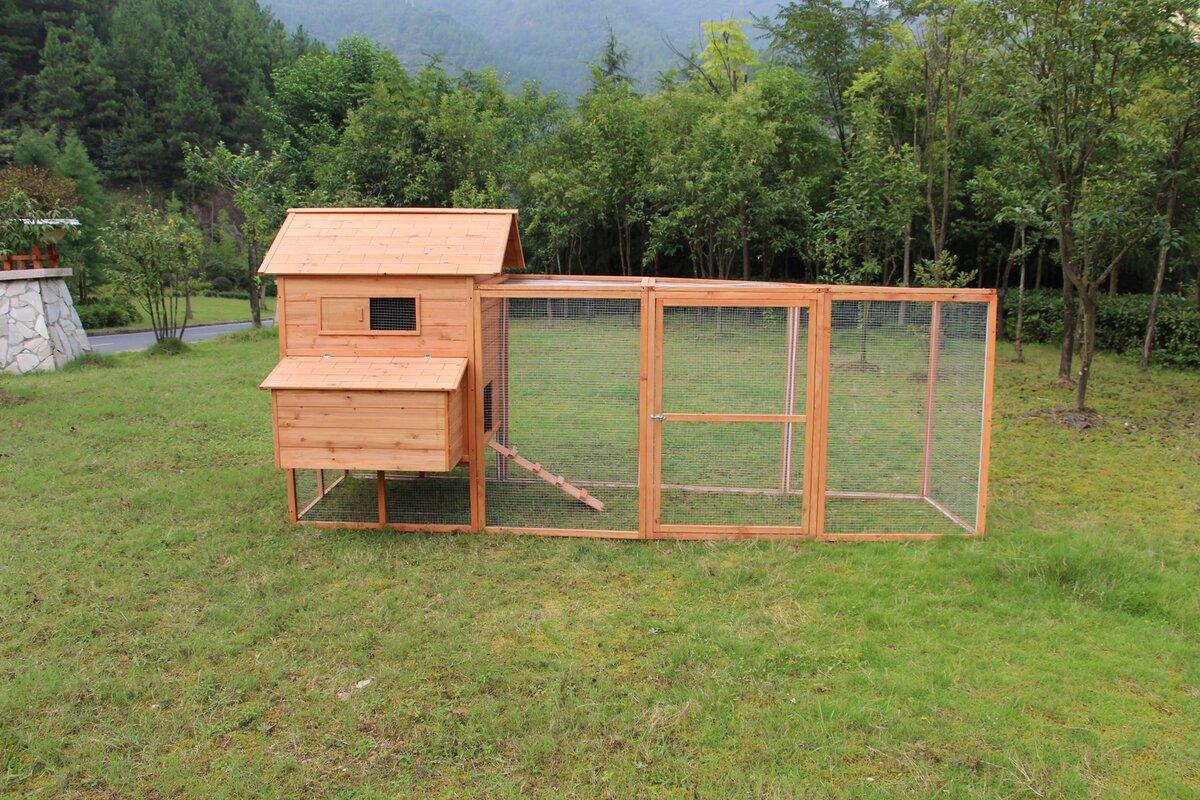 Tucker Murphy Pet Beasley Hen Chicken Coop With Chicken