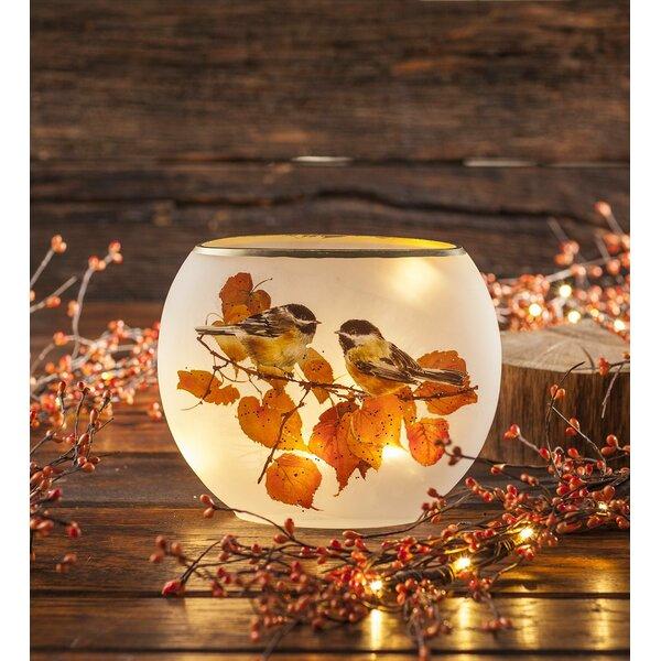 Chickadee Glass Accent Night Light by Plow & Hearth