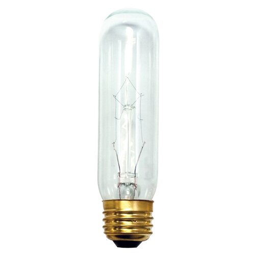15W Incadescent Light Bulb (Set of 28) by Bulbrite Industries