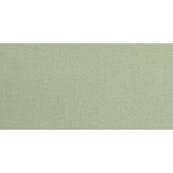 Fashion Show 2 x 6 Porcelain Subway Tile in Grass by PIXL