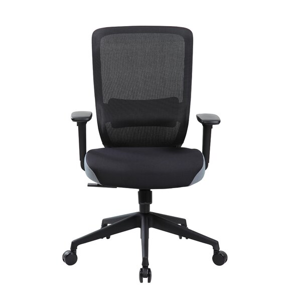 Wynn Ergonomic Mesh Office Chair by Symple Stuff