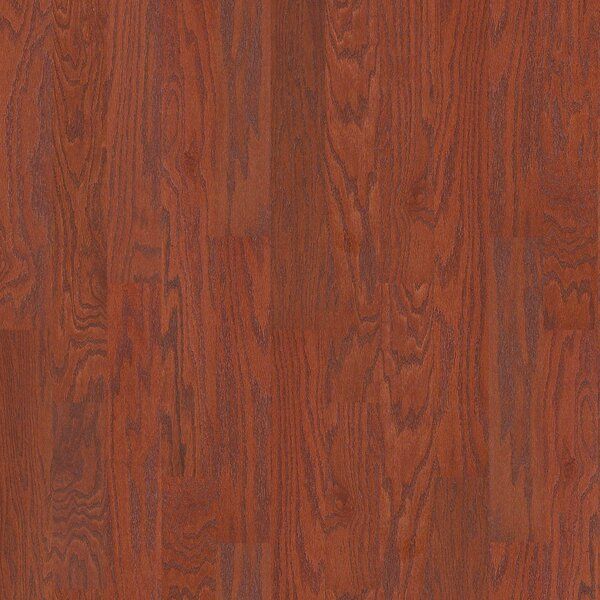 Oak Grove 5 Engineered Red Oak Hardwood Flooring in Stilson by Shaw Floors