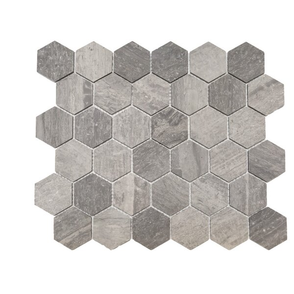 Honeycomb Honed 2 x 2 Marble Mosaic Tile in Blue Savoy by Ephesus Stones