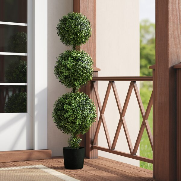 Triple Ball Boxwood Topiary in Planter by Darby Home Co