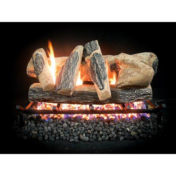 Complete Match Light Rainier Natural Gas Log Kit by Dreffco