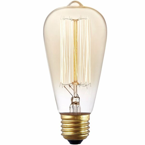 40W Gold E26/Medium Light Bulb by Light Society