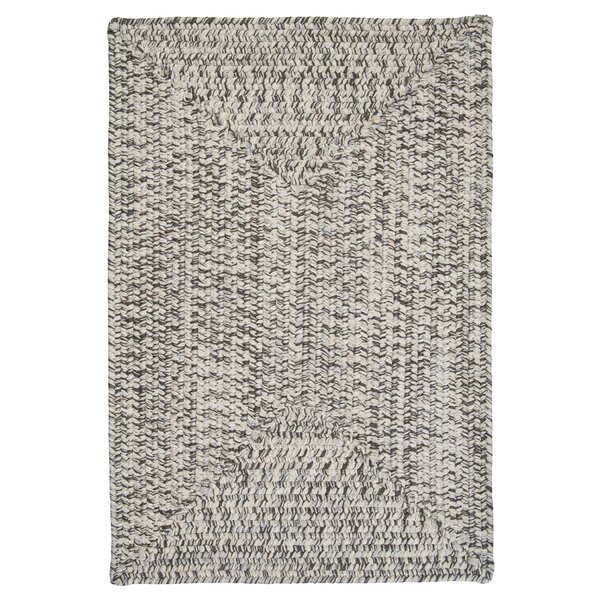 Beltran Silver Shimmer Braided Area Rug by Winston
