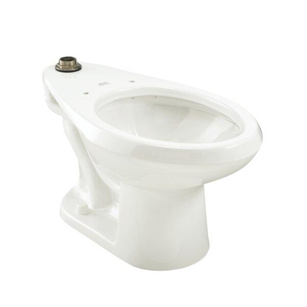 Madera Universal 1.6 GPF Elongated Toilet Bowl by American Standard