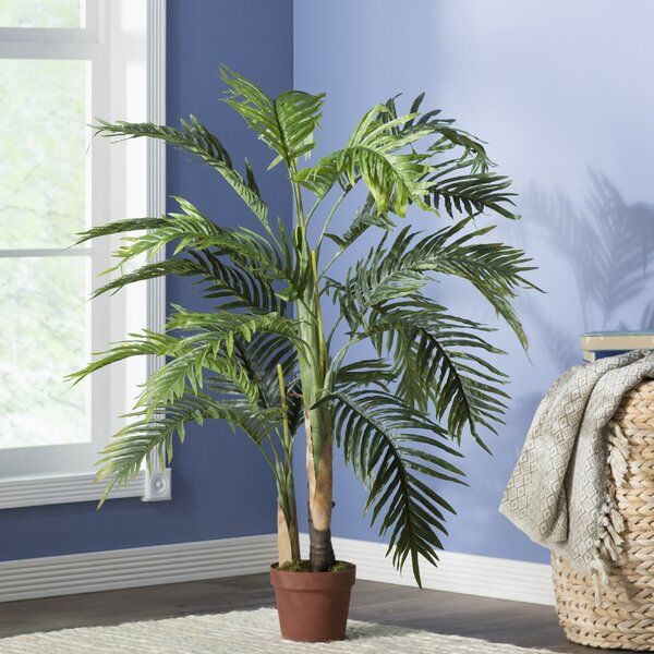 Areca Palm Tree in Pot by Beachcrest Home