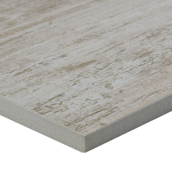 Season Wood 12 x 48 Porcelain Wood Look Tile in Winter Spruce by Daltile
