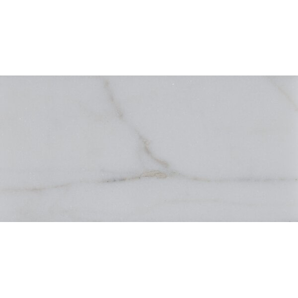 3 x 6 Polished Marble Tile in Calacatta Gold by MSI