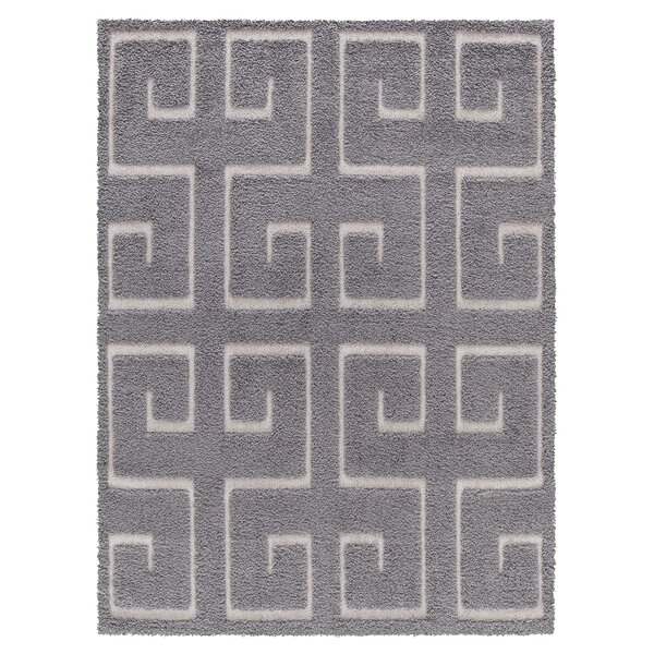 Ruiz Moroccan Shag Gray/White Area Rug by Mercer41