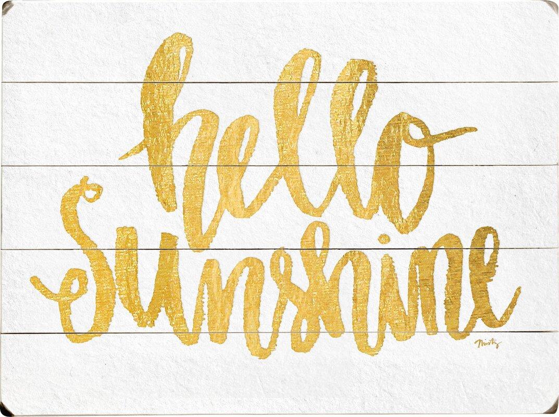 Wrought Studio Cooper Square Hello Sunshine Textual Art on Plaque ...