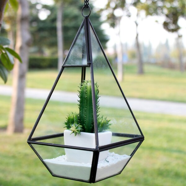 Nonahedron Skinny Pyramid Glass Terrarium by WGV International