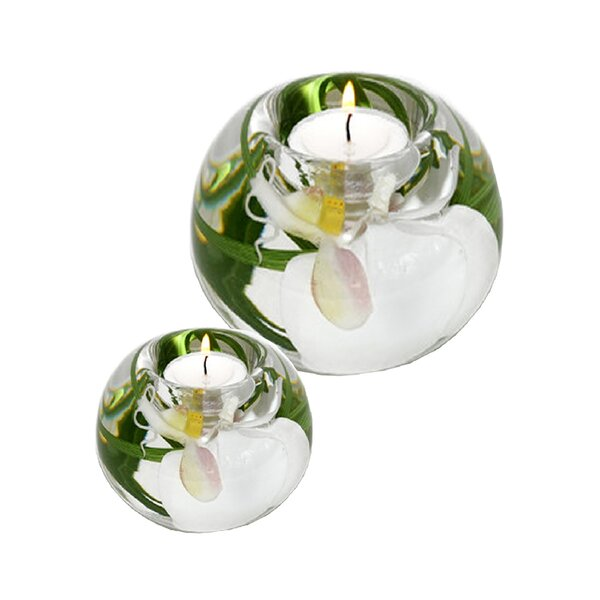 Phalaenopsis Orchid 2 Piece Glass Tealight Set by Bloomsbury Market