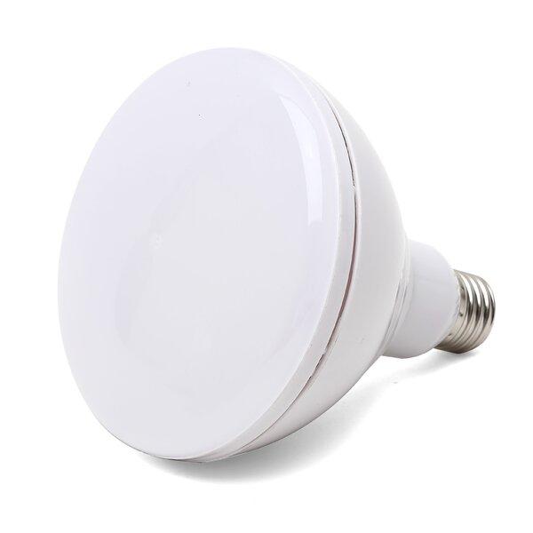 15W E26 Medium LED Light Bulb (Set of 4) by Viribright