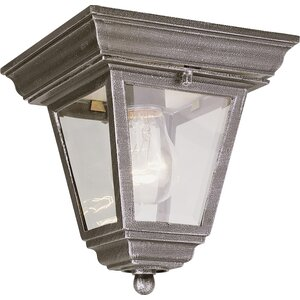 Outdoor 1-Light Flush Mount