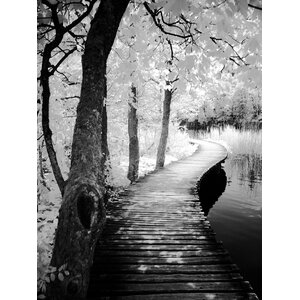 'Take a Walk' Framed Photographic Print on Wrapped Canvas by Latitude Run