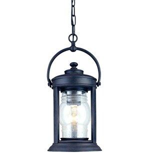 Check Prices Villalvazo 1-Light Outdoor Hanging Lantern By Breakwater Bay
