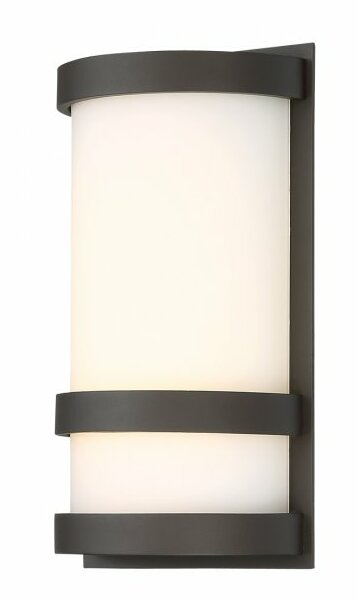 Ferriera 1-Light LED Outdoor Sconce by Ebern Designs