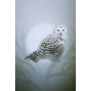 'Snow Owl' Graphic Art Print on Canvas by East Urban Home