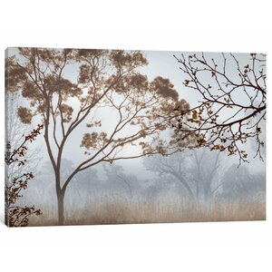 'Early Morning Mist II' Photographic Print on Canvas by East Urban Home