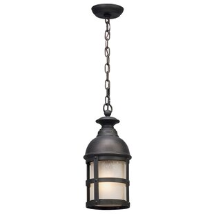 Reviews Marli 1-Light Incandescent Outdoor Pendant By 17 Stories