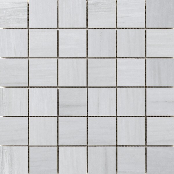 Latitude 2 x 2 Porcelain Mosaic Tile in Gray by Emser Tile