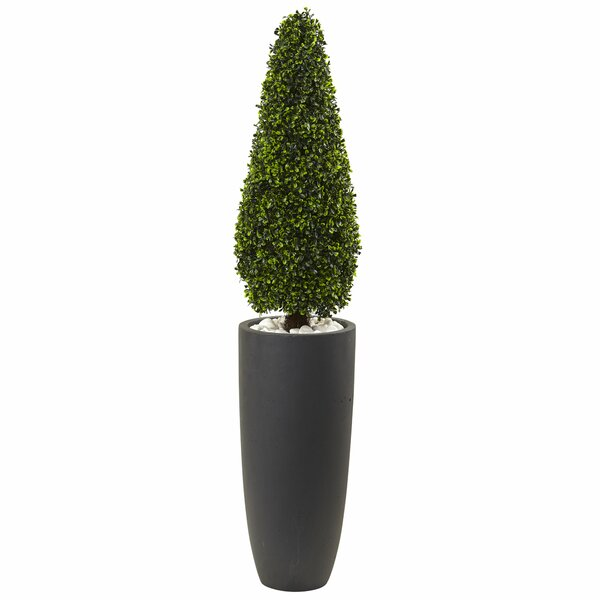 Boxwood Topiary in Planter by Nearly Natural