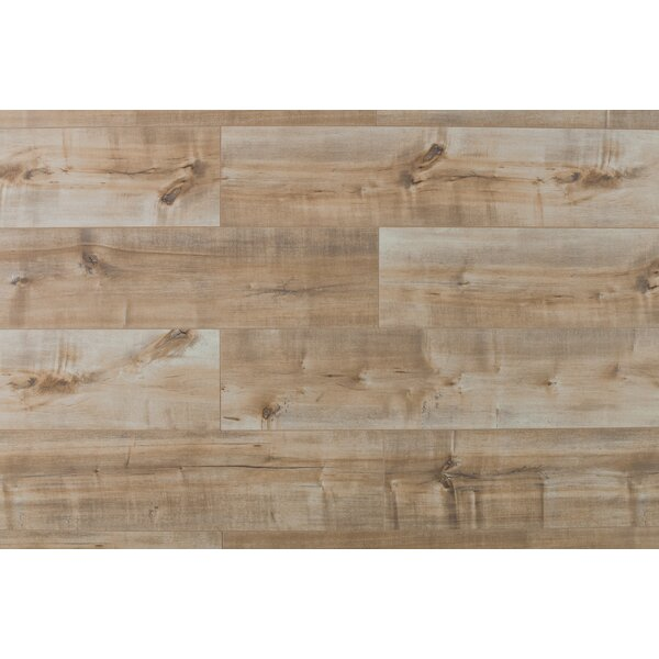 Dombrowski 8 x 48 x  12mm Maple Laminate Flooring in Coco Fresco by Serradon