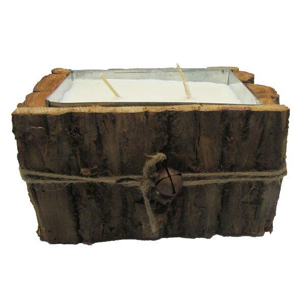 Cinnamon Bun Boxwood Scented Jar Candle by Gracie Oaks