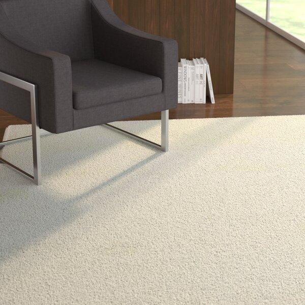 Morillo Star Shaggy Cozy Solid Cream Area Rug by Ebern Designs