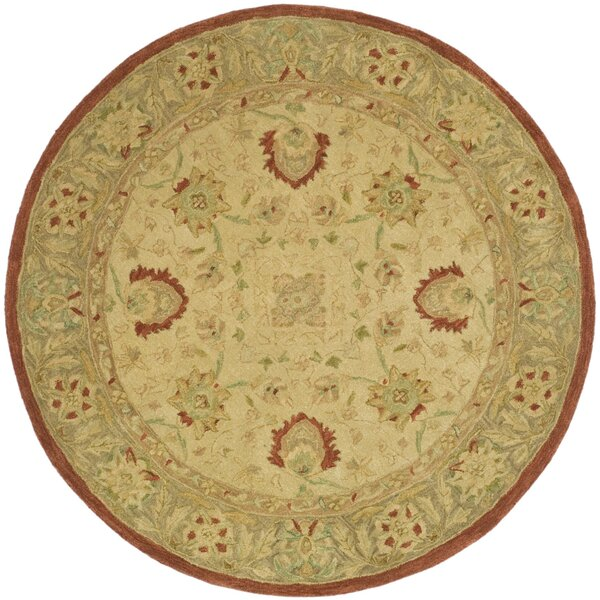 Anatolia Ivory/Rust Area Rug by Safavieh